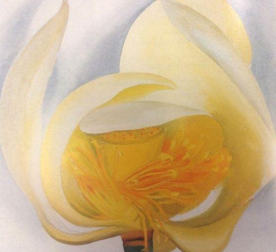 Georgia O'Keeffe - White Lotus