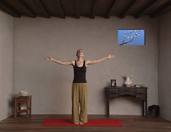 Bill Viola - Catherine's Room, Scene 1