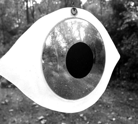 Frederick Franck, Eye-I